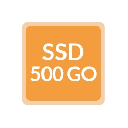 Remplacement SSD 500Go - Ordinateur reconditionné