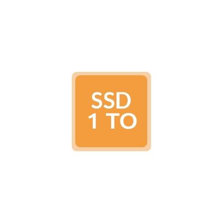 Remplacement disque par SSD 1To - Ordinateur reconditionné
