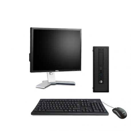 Pack HP EliteDesk 800 G1 SFF - 4Go - 240Go SSD + Ecran 19''