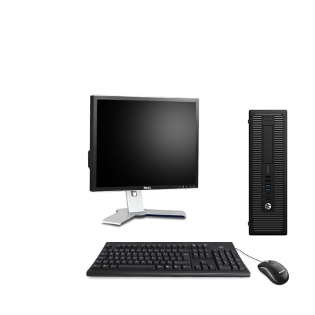 HP ProDesk 600 G1 SFF - 8Go - 250Go HDD - Ecran19
